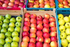 Fresh red and green apples in a market.  stock images