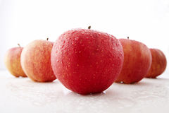 Fresh red and green apples Royalty Free Stock Images
