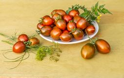 The fresh red and green bright tomatoes cherry and green tomato leaves with yellow flowers lie on a white plate on a yellow wooden stock photos