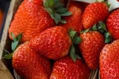Fresh, red, green strawberries are packed in baskets. Fresh strawberries are packed in baskets royalty free stock photos