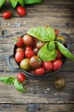 Fresh red and green tomatos and basil Royalty Free Stock Photos