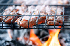 Fresh red grilled Royalty Free Stock Photos