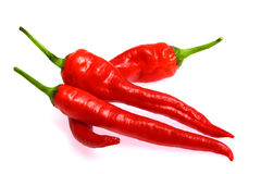 Fresh red hot chili pepper Royalty Free Stock Photos
