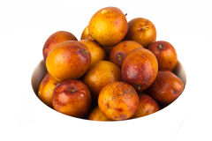 Fresh red jujube Stock Image