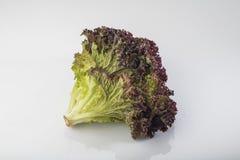 Fresh red leaf lettuce isolated on white background Stock Photo