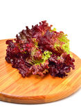 Fresh red lettuce on the wooden board Royalty Free Stock Photos