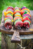 Fresh red meat and vegetables with spices on grill Royalty Free Stock Photo
