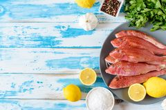 Fresh red mullet fish on blue wooden background with herbs. And spices. Flat lay Royalty Free Stock Photography