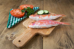 Fresh red mullet with tomatoes and parsley Royalty Free Stock Photos