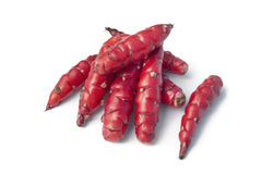 Fresh red New Zealand yams Stock Photography