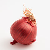 Fresh red onion Royalty Free Stock Photos