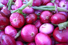 Fresh Red Onions Stock Photo