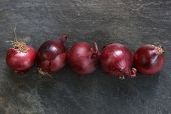 Fresh red onions Stock Photos
