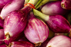 Fresh Red Onions Royalty Free Stock Photo