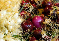 Fresh red  onions on market stall. Stock Photo