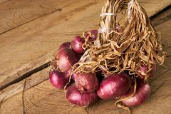 Fresh red onions on old rustic wooden table. Royalty Free Stock Images