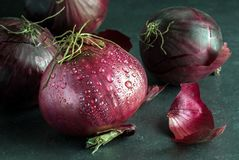 Fresh Red Onions with Water Droplets Stock Photos