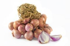 Fresh red onions on white background. Red onions on white background Royalty Free Stock Photos
