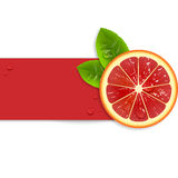 Fresh red orange Stock Image