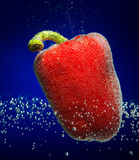 Fresh red paprika with bubbles Stock Photography