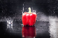 Fresh red paprika over the water. Photo of fresh red paprika over the water Royalty Free Stock Photos