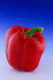 Fresh red pepper Stock Images