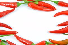 Fresh red pepper background Stock Images