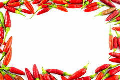 Fresh red pepper border Stock Photography