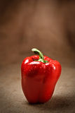 Fresh red pepper on sacking background Stock Images