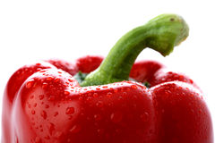 Fresh red pepper Royalty Free Stock Photo