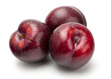 Fresh Red Plum Royalty Free Stock Photography