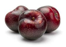 Fresh Red Plum Stock Photography