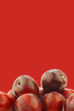 Fresh red plums Royalty Free Stock Photo