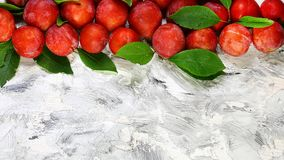 Fresh red plums with leaves on old rustic light background. Top view. Free space for your text stock images