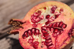 Fresh red pomegranate fruit. Punica granatum in summer Stock Images