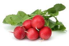 Free Fresh Red Radish Stock Photo - 66513800
