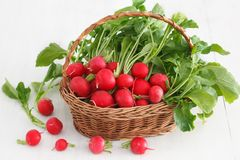 Fresh red radish bunch in wicker basket. On white board background. Healthy food stock photos