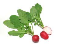 Fresh red radish close up in white #2. Fresh red radish close up in white background Royalty Free Stock Image