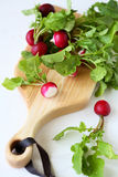 Fresh red radish on cutiing boards. Food Stock Photos