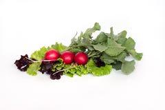 Fresh red radish isolated on white background. Three fresh red radish isolated on white background Royalty Free Stock Photos