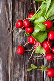 Fresh red radish with leaves on the boards Stock Photos