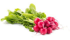 Fresh red radish with leaves isolated. On white background Stock Photography