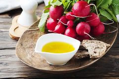 Fresh red radish with olive oil on the wooden table. Selective focus Stock Images