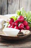 Fresh red radish with olive oil on the wooden table. Selective focus Royalty Free Stock Photo