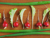 Fresh red radish and salad leaves on a wooden surface Royalty Free Stock Image
