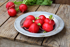 Fresh red radish for salad on wooden background. Healty food. Royalty Free Stock Image