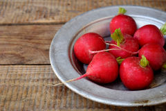 Fresh red radish for salad on wooden background. Healty food. Royalty Free Stock Photography
