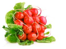 Fresh red radish vegetables with green leaves. Isolated on white background Royalty Free Stock Photos