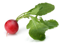 Fresh red radish. On white background Stock Photo