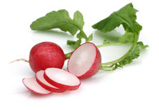 Fresh red radish. On white background Royalty Free Stock Image